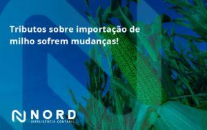 Tributos Sobre Importação De Milho Sofrem Mudanças! Nord Contabilidade - Contabilidade em Vitória da Conquista - BA | Nord Contabilidade